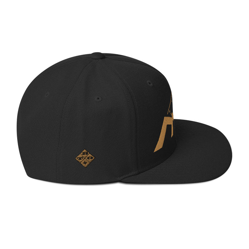 TBO Flat Bill Hat - Black