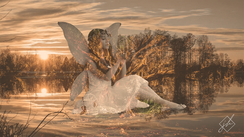 Fairy (Cinemagraph & Still Image Bundle)