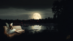 Moon Fairy (Cinemagraph & Still Image Bundle)