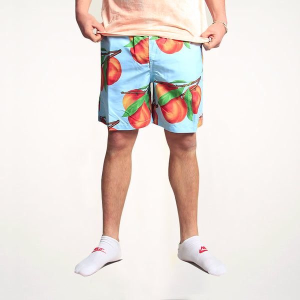 Stussy Peaches Water Short Blue
