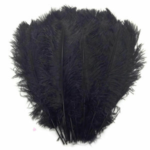 "Black Ostrich Feathers 20"" - 24"""