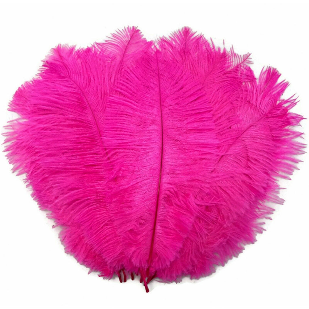 Fuchsia / Hot Pink Ostrich Feathers 20