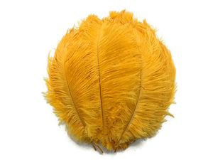 "Gold Ostrich Feathers 20"" - 24"""