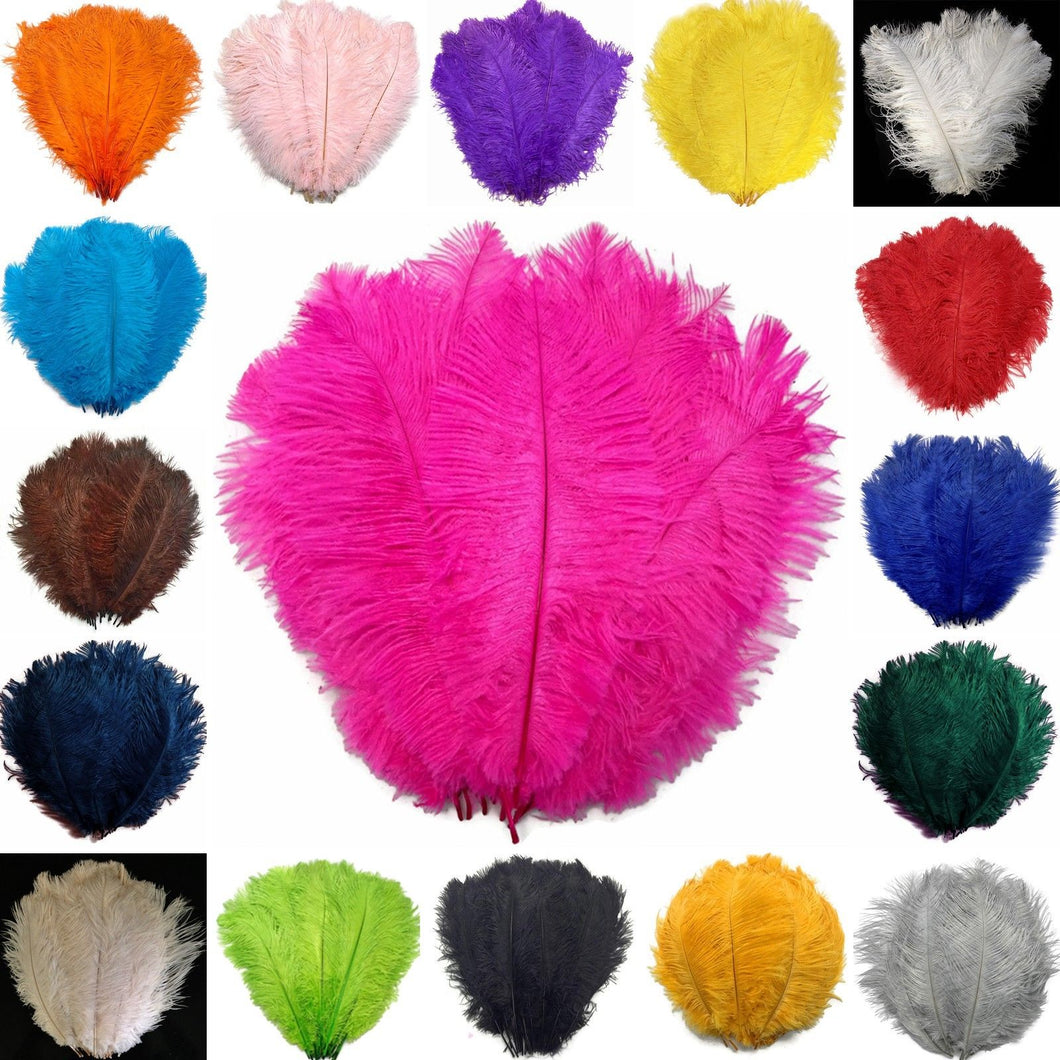 Mixed Colours Ostrich Feathers 20