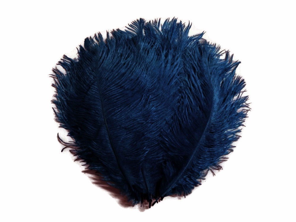 Navy Blue Ostrich Feathers 20