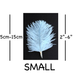 "Pale Blue Ostrich Feathers 2"" - 6"""