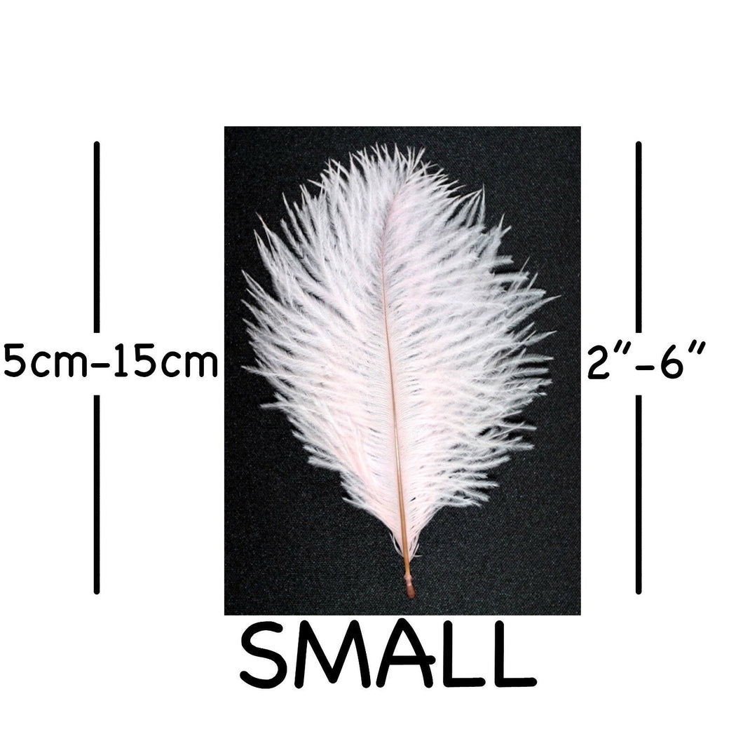 Pale Pink Ostrich Feathers 2