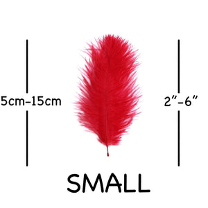 "Red Ostrich Feathers 2"" - 6"""