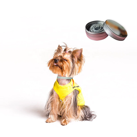 Petmate Anti Flea Collar - Small to Medium Dog