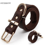 Top Grade Leather Dog Collar Pet Leads Alloy Buckle