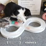 Robotic Bug Toy for Cats