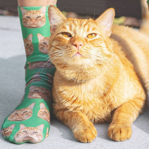 3D Printed Custom Cat Face Socks Personalized Cat Socks Custom Cat Birthday Gifts Cat Lover Socks Christmas Gift Women Men Sock