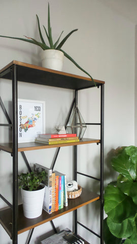 leave open space on shelves to organize collection and books
