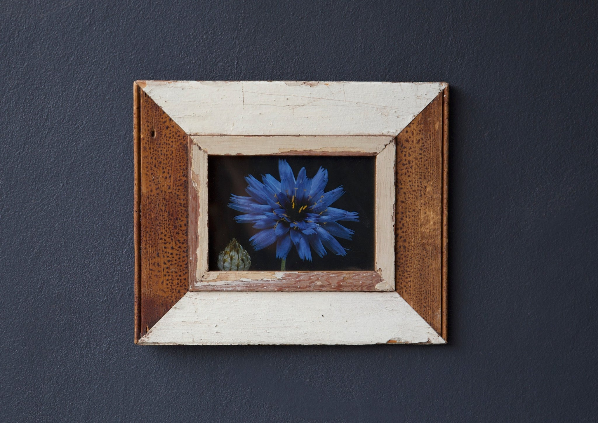 Whitewashed frame with flower print