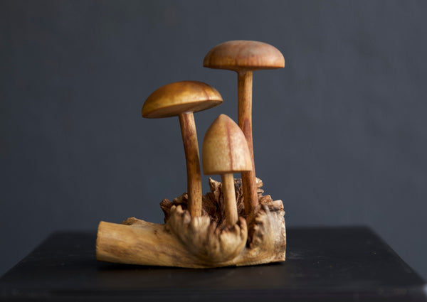 Carved wooden Mushrooms Sculpture - Short Round Top