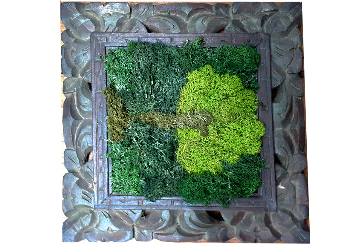 Moss picture frame