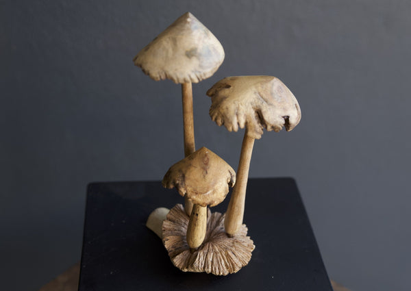 Carved Tall wooden Mushrooms Sculpture