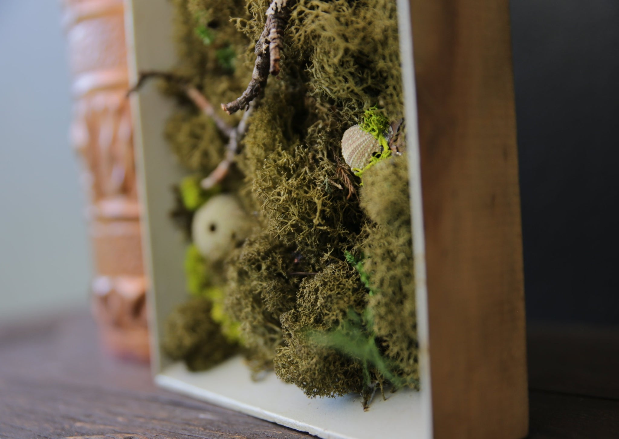 Moss Painting - Framed Picture with Ever-Moss, Forest twigs and Seashells