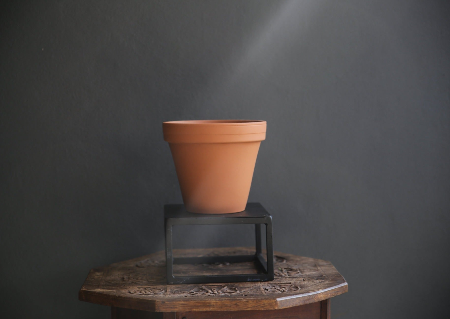 Terracotta Pot Plant for Kitchen Garden