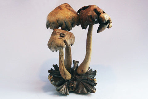 Carved Wooden Mushrooms