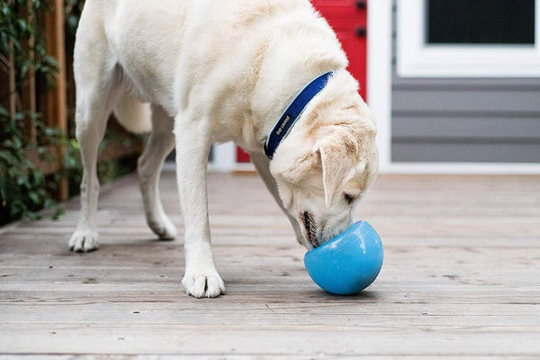 DOG BALL TREAT DISPENSER - SUPPORTS SERVICE DOGS