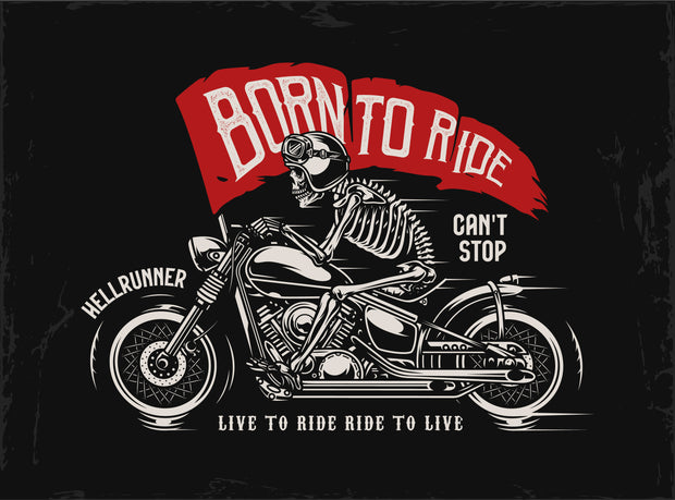 BORN TO RIDE - HOODY MEDIUM WEIGHT