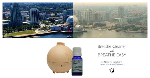 Breathe Cleaner with Breathe EASY - Diffuser Duo