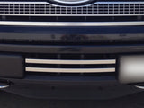 ecoboost platinum f150 bumper lower grille grill oem factory look
