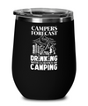 Campers Forecast: Drinking With a Chance of Camping Wine Glass