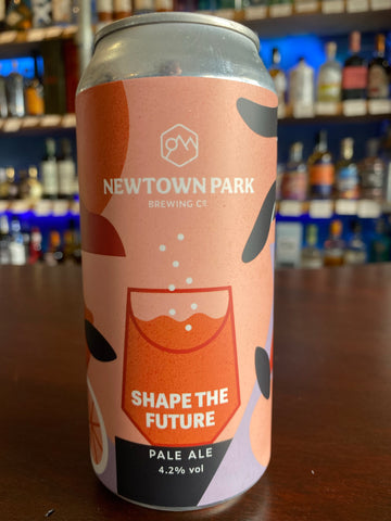 Newtown Park - Shape The Future