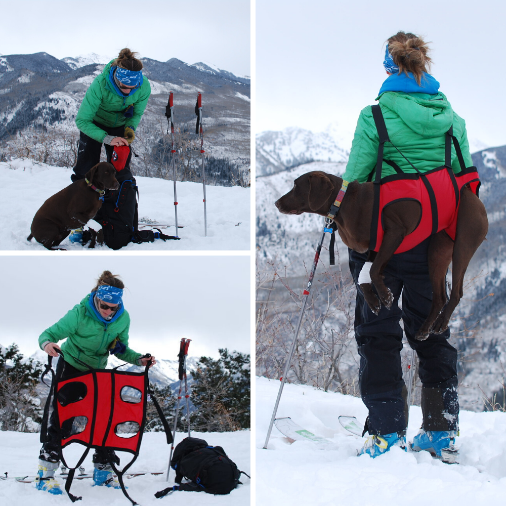 Airlift by Fido Pro - Emergency Dog-Carrying Harness Europe