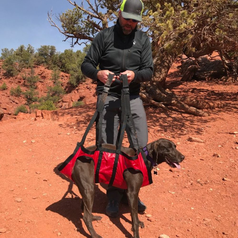 Airlift by Fido Pro - Emergency Dog-Carrying Harness