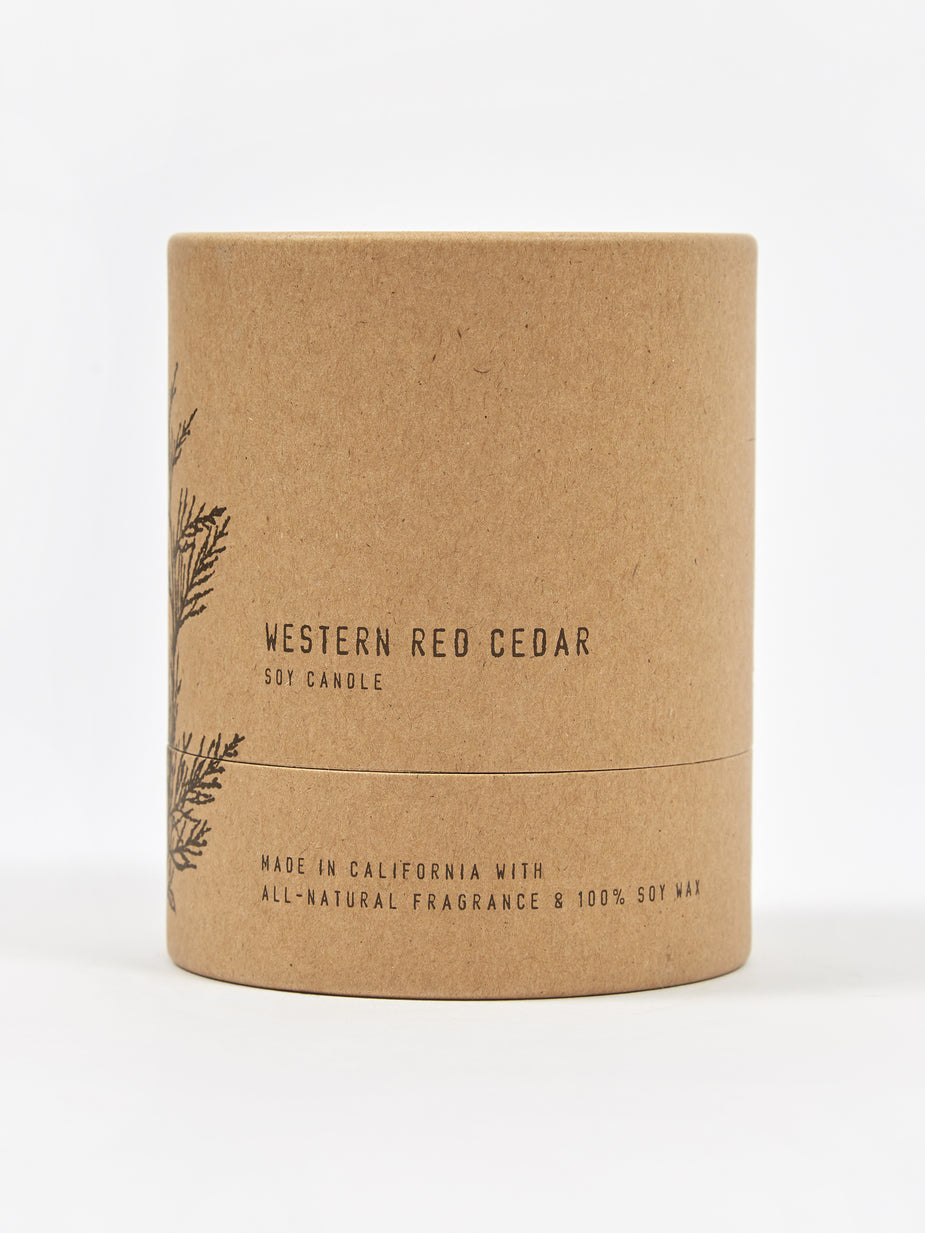 P.F. Candle Co. P.F. Candle Co. No. 07 Western Red Cedar 8oz Terra Candle - 8oz - Other