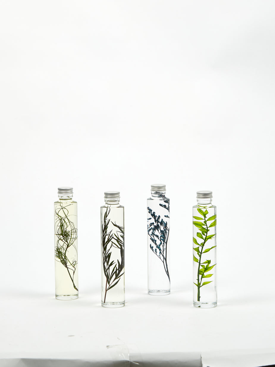 Slow Pharmacy Slow Pharmacy Bottle Plant Small - Other