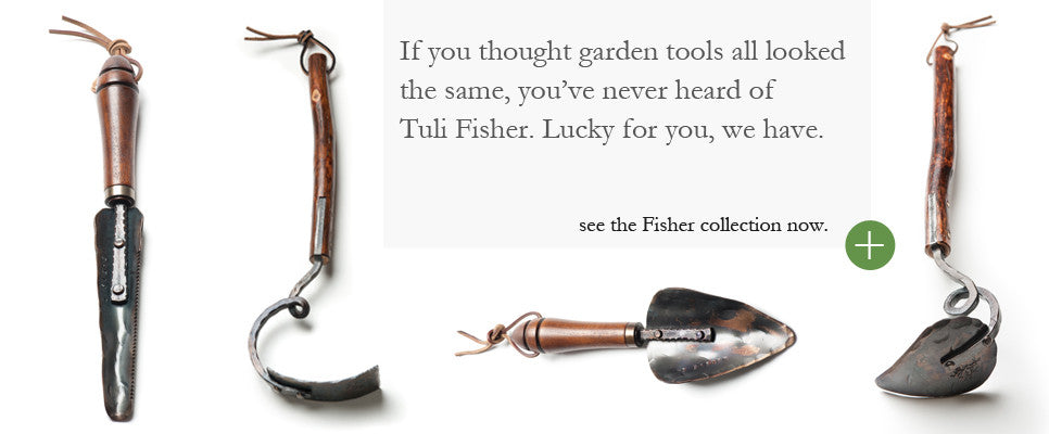 Tuli Fisher Collection