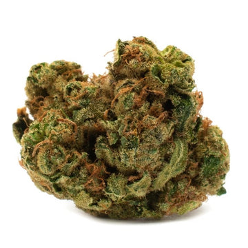 Dried Cannabis - MB - Houseplant Indica Flower - Grams: