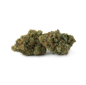 Dried Cannabis - MB - Top Leaf Girl Scout Cookies Flower - Grams: