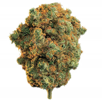 Dried Cannabis - MB - Edison La Strada Flower - Grams: