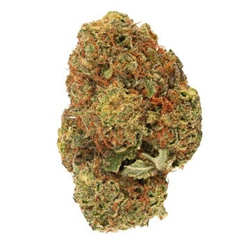 Dried Cannabis - MB - Daily Special Indica Flower - Grams: