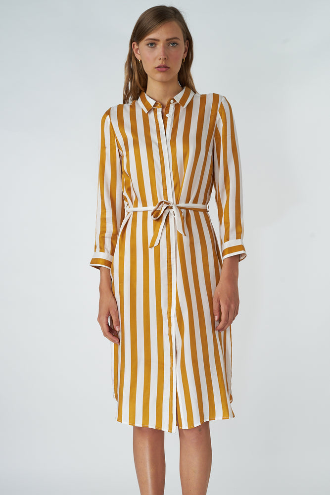 Cupro Striped Shirt Dress