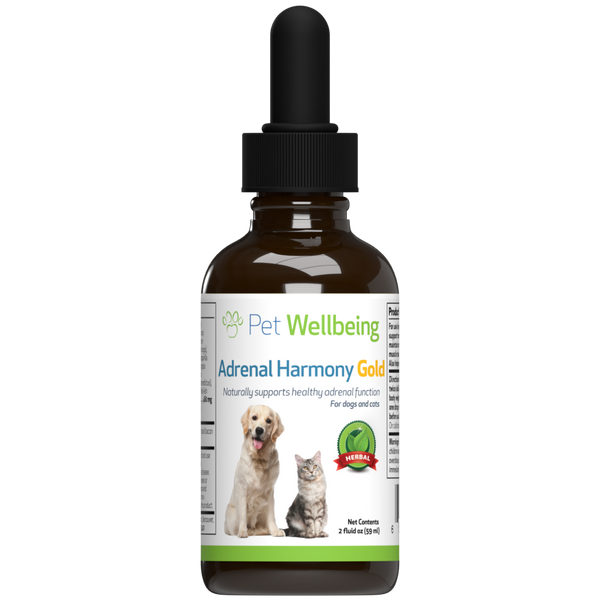 Dr. Jan's Cushing's Kit for Dogs supports Adrenal Gland balance