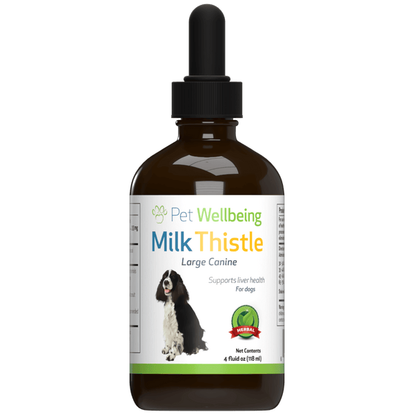 Milk Thistle for Dogs Protects and Supports Healthy Liver Function