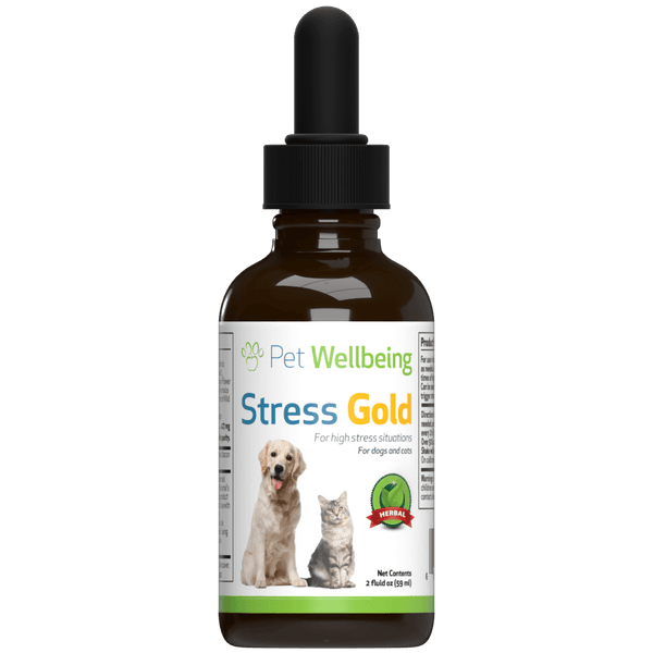 Stress Gold for Dogs provides Calming Support during Stress, Travel