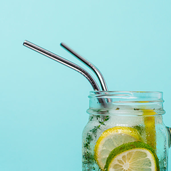 Single Reusable Stainless Steel Straw - Angled