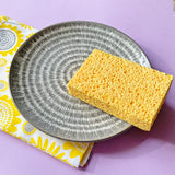 Plastic Free Cleaning Sponges - Pack of 2