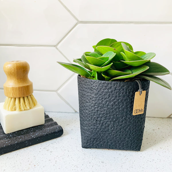 Madrid Plant Pot - Waterproof Recycled Paper in Black by Oohh Collection