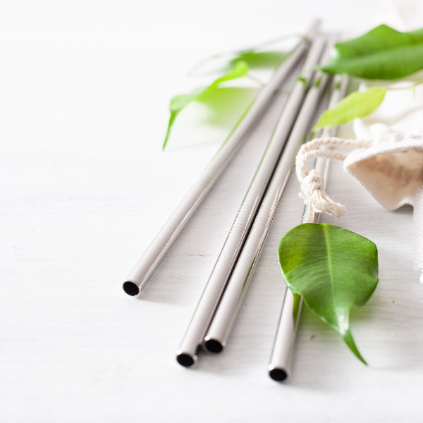 Stainless Steel Reusable Straws - Set of 4