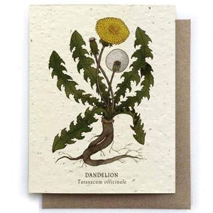 Plantable Seed Paper Greeting Card - Dandelion - The Bower Studio -Freehand Market