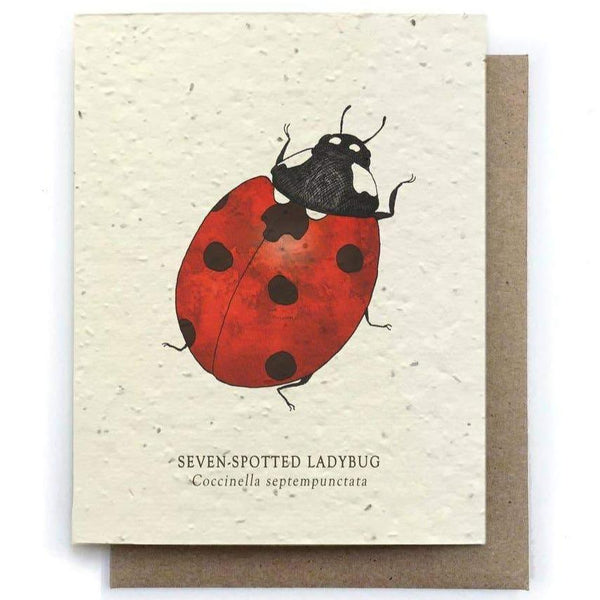 Plantable Seed Paper Greeting Card - Ladybug - The Bower Studio -Freehand Market