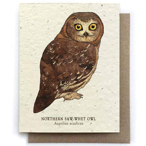 Plantable Seed Paper Greeting Card - Owl - The Bower Studio -Freehand Market